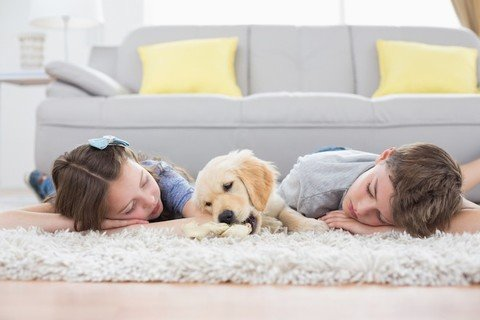 How raising kids with dogs may be a healthy decisi...