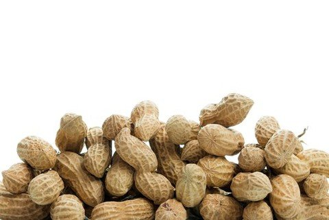 Introducing Peanuts in High Risk Infants Proves Ef...