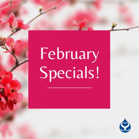 February 2021 Specials!