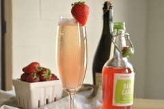Strawberry Rhubarb Sparkler