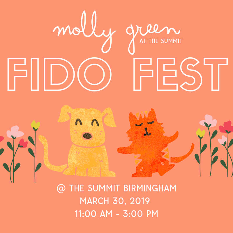 Molly Green + Fido Fest at The Summit Image