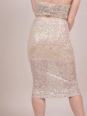 Glisten Skirt Sparkly Sequin Bodycon Back