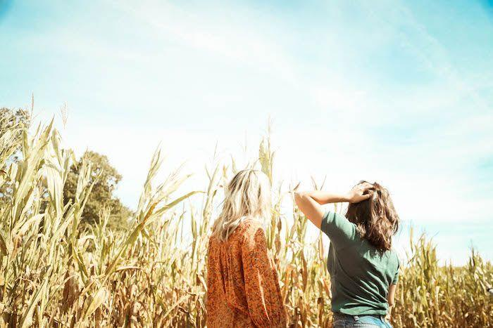 Get Lost in a Corn Maze Image