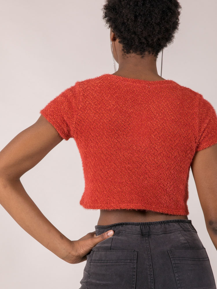 Rust Colored Fuzzy Sam Short Sleeve Sweater Back