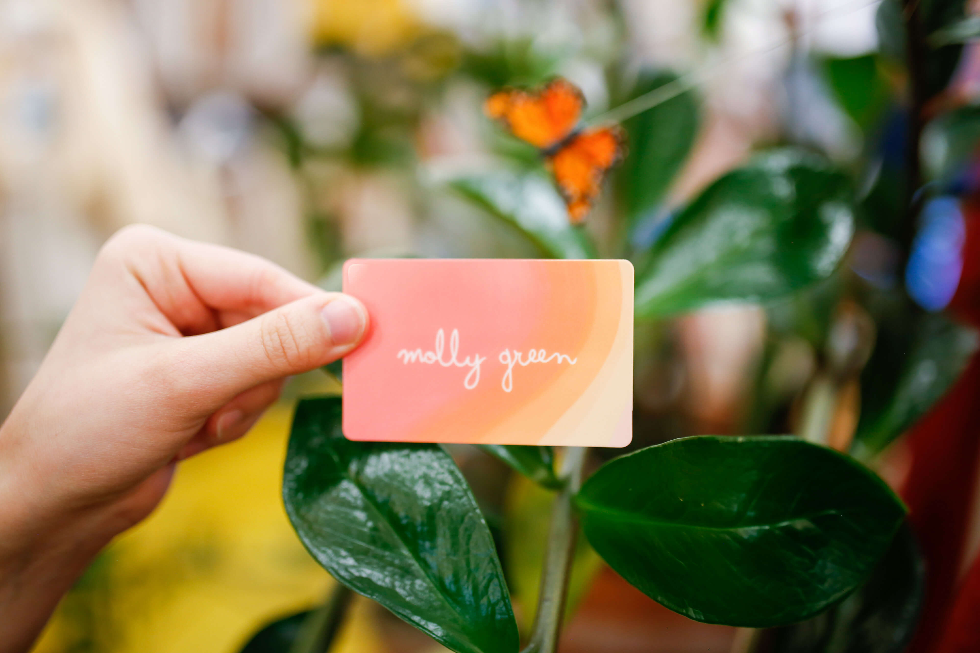 Molly Green Physical Gift Card